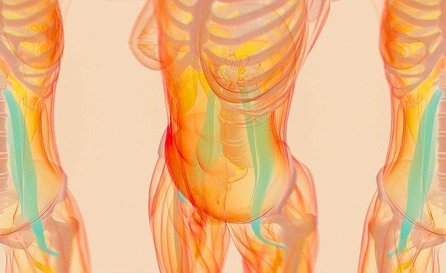 Bacaklardan başlayarak omurgaya kadar uzanan psoas kası, bacaklarla bel kemiğini bağlayan tek kas. Tam olarak esnetildiği zaman ise size adeta 'anı yaşama' şansı veriyor.