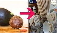 """На радость """"зеленым"""": Мексиканская компания создает одноразовые столовые приборы из косточек авокадо"""