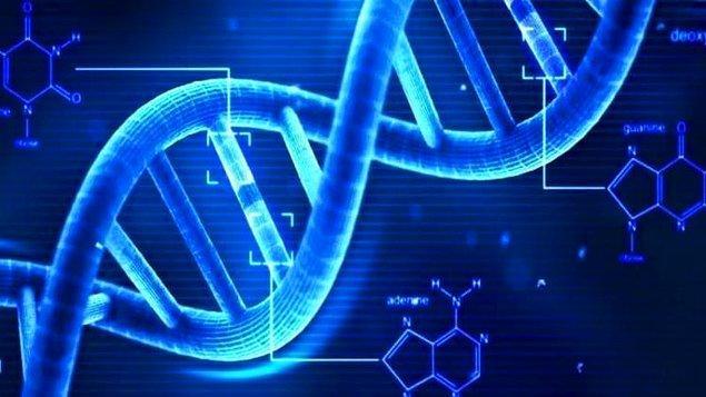 1953: Francis Crick ve James D. Watson, DNA molekülünün yapısını keşfettiler.
