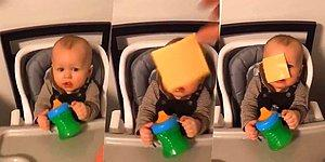 Challenge Accepted: Cheese Slapping A Baby In The Face Is Our New Craze!