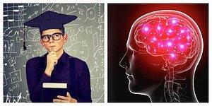 Тест: Сможете ли вы набрать хотя бы 7 правильных ответов в тесте на общие знания?