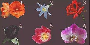 Тест: Самый красивый, по вашему мнению, цветок раскроет удивительный секрет о вашей личности