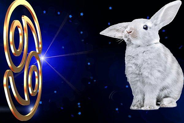 Тест: Какое тотемное животное олицетворяет ваш знак зодиака?