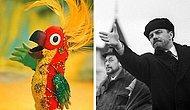 10 героев советских мультиков и их знаменитые прототипы