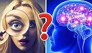 Тест на интеллект: Докажите, что вы разносторонняя личность, набрав 12/14 без помощи Гугла