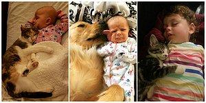 23 Adorable Photos Showing Why Every Child Should Have a Pet!