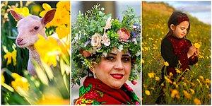 22 Magnificent Spring Photos From All Over The World!