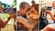 There's Still Hope! A Man Gives Up Everything And Moves To South Africa To Save Wild Animals