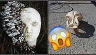 Самые странные и удивительные вещи, найденные на пляжах