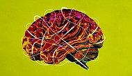 Тест: Вам следует гордиться своим интеллектом, если сможете набрать 8 и больше правильных ответов