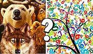 Тест: Вы выбираете животных, а мы рассказываем, какое число - ваше счастливое