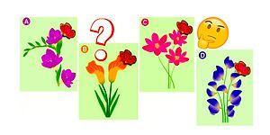 Тест: Выберите, на какой цветок сядет бабочка, а мы расскажем, кто в отношениях вам подходит