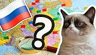Тест на знание городов России на карте, который стыдно пройти меньше, чем на 5/8