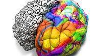 Тест: Докажите, что вы настоящий всезнайка, ответив правильно на все 12 вопросов