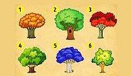 Тест: Выберите дерево и узнайте, какие перемены ожидают вас этой осенью