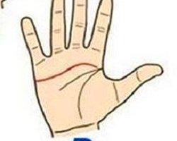 Если ваша линия сердца начинается между указательным и большим пальцами,...