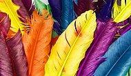 Тест: С каким цветом гармонирует ваша душа?