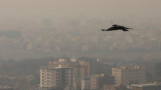 399 bin 25 ölümün, 51 bin 574'ü hava kirliliğinden