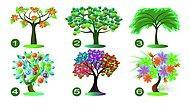 Тест: Выберите дерево, а мы расскажем о самом большом вашем достоинстве