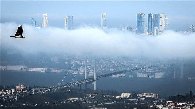 İmamoğlu: 'İstanbul'un yeşile ihtiyacı var'