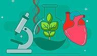 Тест: Смогли бы вы успешно сдать ЕГЭ по биологии?