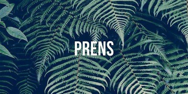 """7. Hangisi """"prens"""" kelimesinin bir hecesidir?"""