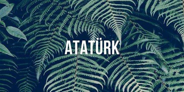 """5. """"Atatürk"""" kelimesinde kaç tane hece vardır?"""