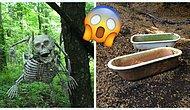 """""""Как такое возможно?"""", или Очередная порция странных предметов, найденных во время прогулок в лесу"""