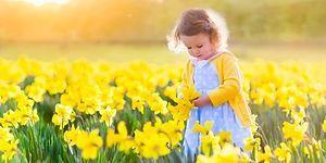 Тест: Выбрав цветок, вы узнаете о себе много нового