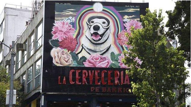 Donanmaya göre Frida, 12 kişinin hayatını kurtarırken, 40 kişinin cesedine ulaşılmasını sağladı.