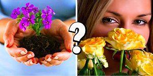Тест: Какой вы цветок?