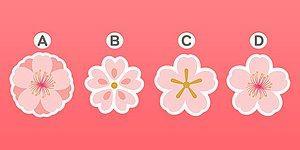 Тест: Выберите один из цветков и узнайте, чего вам стоит ожидать от июля 2020 года