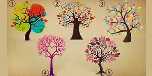Тест: Выберите дерево и узнайте, что произойдет с вами этой осенью