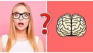 Тест: Если вы не наберете в этом тесте больше 8/12, то зачем вы вообще получали образование?