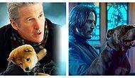 Тест: Вы по-настоящему внимательный зритель, если сможете вспомнить, в каких фильмах видели этих животных