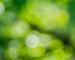 Ваша душа зелёного цвета!