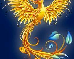 Эта птица дарит вам любовь