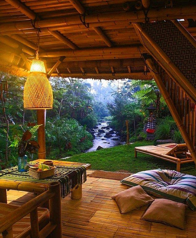 18. Bali'de bir ormanda...