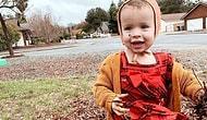 Люди пожертвовали 50 тысяч долларов на кампанию, начатую для христианской пары, которая хочет воскресить свою 2-летнюю дочь