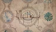 Самая загадочная книга в истории человечества: Рукопись Войнича, которая, как  утверждается, сводит с ума тех, кто пытается ее решить