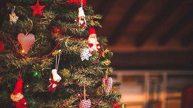 14. Amerika'da kutlanan ilk Noel 1539 sıralarında Talahassee'de gerçekleşmiştir.