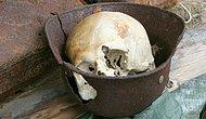 На территории стройки в Великобритании были найдены 42 скелета людей, со связанными руками