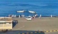 В ОАЭ погибли два человека от нападения рыб
