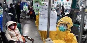 Позитивные новости, связанные с коронавирусом, которые хоть немного поднимут вам настроение