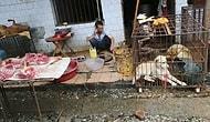 Смотрите в маске, чтобы не подхватить корону: видео, записанное на мясном рынке в Ухане