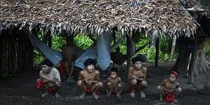 Коронавирус добрался до лесов Амазонки: выявлены случаи среди индейских племен