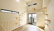 В Японии построили многоквартирный дом, предназначенный для одиноких людей с кошками, и тут есть все для кошачьего комфорта