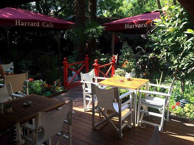Harvard Cafe, Etiler