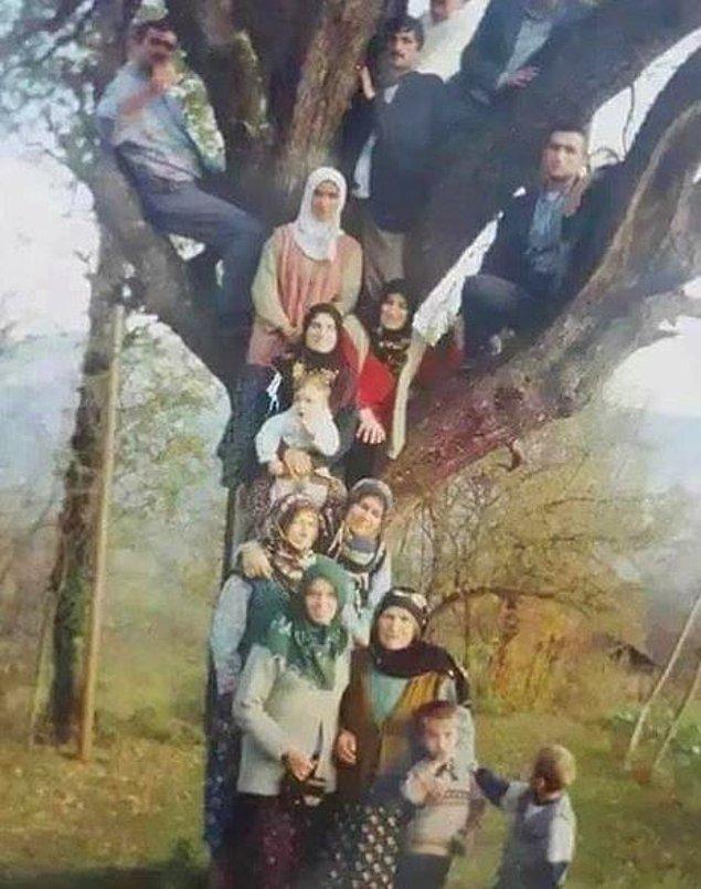 16. Soy ağacı. :)