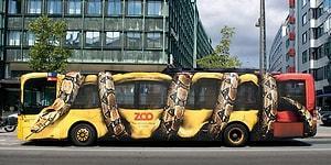 30 самых креативных и оригинальных примеров рекламы на автобусах